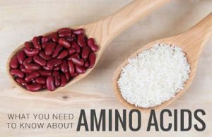 What you need to know more about Amino Acids